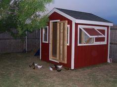 Mac In Wisco's Chicken Coop - BackYard Chickens Community