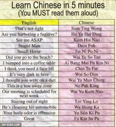 Learn Chinese in 5 minutes.