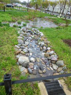 Street Side Rain Garden Concept Sustainable Design Pinterest