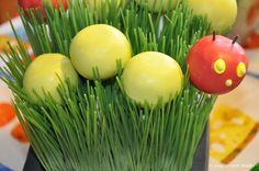 Very Hungry Caterpillar Party - love these use of cake balls in the faux grass! {click to see the whole party!}
