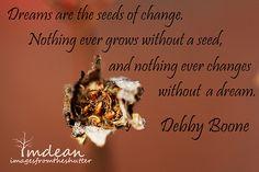 seeds...