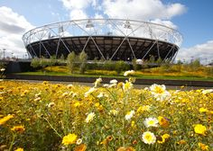 London 2012: Olympic Stadium by Populous