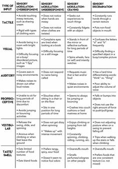 Asperger's syndrome is the mildest form of autism and includes higher functioning. Here are some of the common symptoms associated with Asperger's Syndrome. Sensory Motor, Autism Sensory, Sensory Diet, Sensory Activities, Sensory Toys, Proprioceptive Activities, Oral Motor Activities, Physical Activities, Occupational Therapy Activities