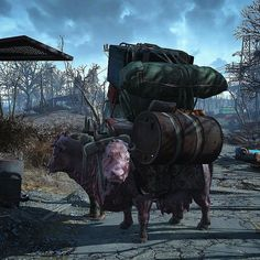 Fallout RPG  -  Lost brahmin convoy? #Fallout #gaming                                                                                                                                                                                 Mais