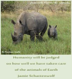 Humanity will be judged on how well we have taken care of the animals of Earth. ~ Jamie Schattenwolf
