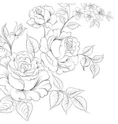 Bouquet of roses iolated on white background vector  by Kotkoa on VectorStock®