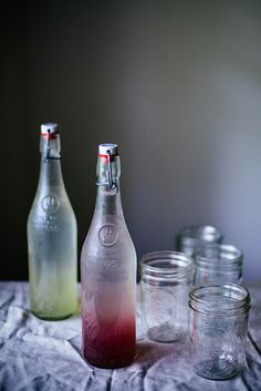 lavender honey meyer lemon & cucumber lime mint sodas by Beth Kirby | {local milk}, via Flickr