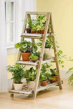 Idée déco : Double escabeau en bois transformé en étagère à plantes