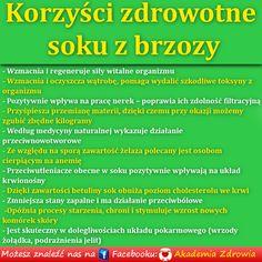 Korzyści zdrowotne soku z brzozy - Zdrowe poradniki Polish Recipes, Healthier You, Cholesterol, Wellness, Skin Care, Healthy, Magic, Polish Food Recipes, Skin Treatments
