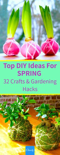 32 Tips & Tricks That Will Put A SPRING In Your Step | #cleverly #diy #tips #tricks #hacks #fyi #dyk #tipsandtricks #lifehacks #spring #springhassprung #homegardening #urbangardening #reuse #repeurpose #flowers #diygardening #gardeninghacks #homehacks #homeandgardens Gardening Gloves, Gardening Tips, Outside Stairs, Spring Plants, How To Get Warm, Spring Has Sprung, Easy Diy Crafts, Garden Styles, Planting Flowers