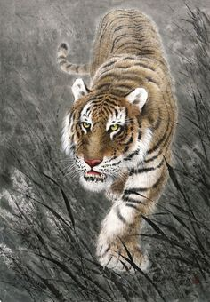 (North Korea) Tiger by An Myeong-seok (1960-  ). Korean brush watercolor. 안명석.