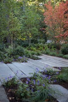 Matthew Cunningham Landscape Design LLC's Design Ideas, Pictures, Remodel, and Decor