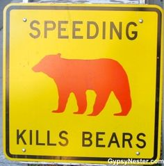 No word on how the bears get going so fast. See more Zany Park Signs here: http://www.gypsynester.com/zany-park-signs.htm