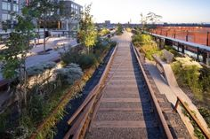 "Detail shot of one of the three Rail Track Walks at the High Line at the Rail Yards, featuring a rail ""frog"" or moment where the rails change directions. Image © Iwan Baan, 2014 (Section 3)"
