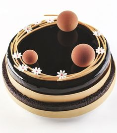 Is this a cake? Fancy Desserts, Fancy Cakes, Mini Cakes, Cupcake Cakes, Chocolate Art, Chocolate Ganache, Chocolate Recipes, Beautiful Desserts, Beautiful Cakes