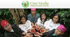 Cooperativa Oro Verde: del cultivo de coca al cultivo del café exitoso y ejemplar   Hoy en el blog de César Hinojosa Quiroz hablaremos de ...