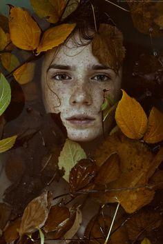 autumn - -