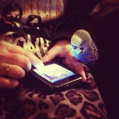 Sharing the iphone.....adorable!