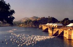 Beauty in Rajasthan INDIA