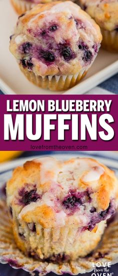 These lemon blueberry muffins take regular blueberry . muffins to a whole new level! Love the addition of the lemon in these. #lemon #blueberry #lemonblueberry #muffins #muffinrecipes #baking #lftorecipes