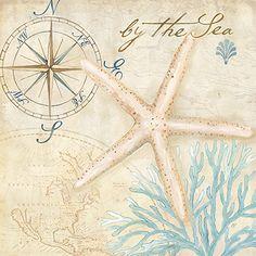 Nautical Shells I by Cynthia Coulter Canvas Art - Multi Coastal Colors, Coastal Decor, Beach Art, Wall Plaques, Compass Tattoo, Canvas Artwork, Illustrations, Online Art, Vintage World Maps