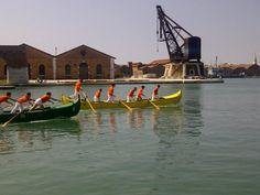 Regata delle Palme su caorline, ingresso in Arsenale e giro del paleto #Venezia