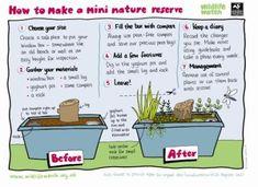 Outdoor nature activities