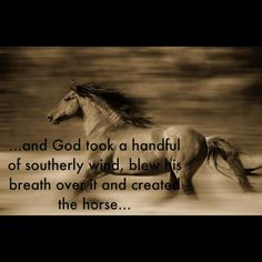 And God created the horse...