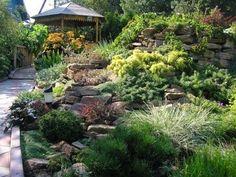 Kerti virágos dombok. Hogyan készítsünk egy alpesi hegyet az országban? Garden Landscaping, Lawn, Landscape, Flowers, Plants, Gardening, Front Yard Landscaping, Scenery, Lawn And Garden