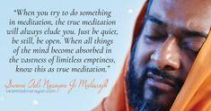 Swami Adi Narayan Ji Maharajh on the experience of True Meditation Meditation Quotes, Spiritual Teachers, Just Be You, You Tried, Something To Do, Spirituality, Mindfulness, Wisdom, Words