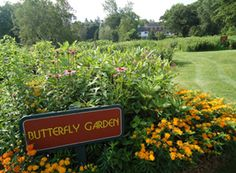 Bickelhaupt Arboretum, Clinton - This beautiful arboretum is one of only four Monarch waystation sites in Iowa. ♡