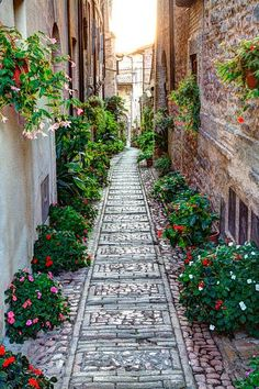 Buildings along back street of Spello, Umbria, Italy