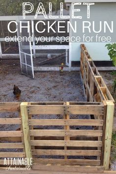 A recycled pallet chicken run is a good way to create more space for your hens to peck. This easy chicken coop extension is a cheap & easy DIY pallet fence. Chicken Fence, Chicken Coop Pallets, Easy Chicken Coop, Diy Chicken Coop Plans, Portable Chicken Coop, Backyard Chicken Coops, Chicken Runs, Chickens Backyard, Chicken Run Ideas Diy