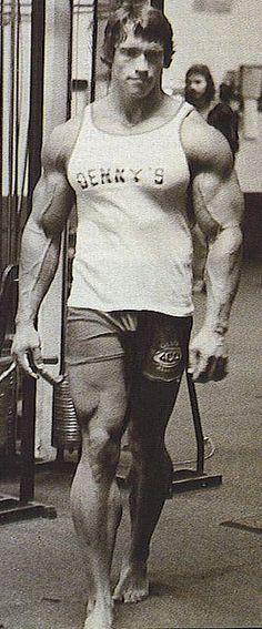 Arnold Schwarzenegger Big Muscles Bodybuilder Movie Star California Governator M1T by Tall Fool, via Flickr