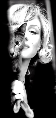 Marilyn Monroe with a Russian Blue. This picture makes me smile. That kitty is gorgeous and so is Marilyn! Crazy Cat Lady, Crazy Cats, Classic Hollywood, Old Hollywood, Hollywood Actresses, Hollywood Stars, Portraits, Russian Blue, Foto Art