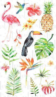 Watercolor Tropical Clipart Summer Flamingo Flower Pineapple Bird Palm Exotic Hibiscus Monstera Fruit Hawaii Beach
