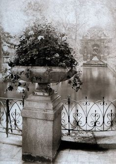 Photographed by Eugene Atget Jardin du Luxembourg, Paris. Eugene Atget, Belle Epoque, Vintage Photography, Art Photography, Landscape Photography, Old Paris, Vintage Paris, Luxembourg Gardens, Getty Museum