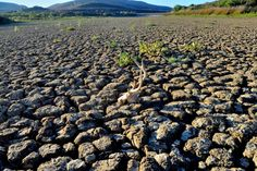 Europe hit by one of the worst droughts since 2003