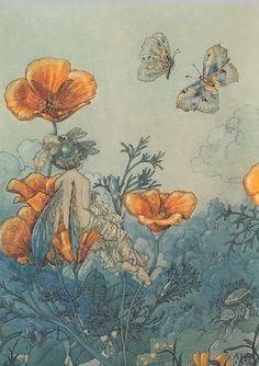 Poppy Fairy by Harold Gaze, circa 1918