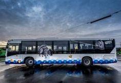 The colorful buses of Stavanger, Norway - The VandalList Stavanger Norway, Art Festival, Good Old, Street Art, City, Buses, Woods, Objects, Hama