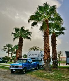 Oasis Palms RV Resort In Coachella Valley California LoveYourRV
