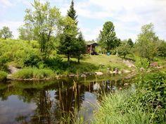 Zen, Golf Courses, River, Garden, Garten, Lawn And Garden, Outdoor, Rivers, Tuin