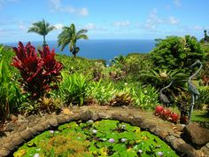 Garden of Eden Botanical Garden, Road to Hana, North Maui