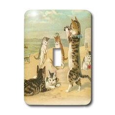 3dRose LLC lsp_48557_1 Cats At The Beach Single Toggle Switch -- See this great product. (This is an Amazon Affiliate link and I receive a commission for the sales)