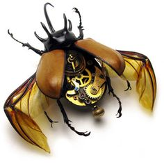 steampunk bug watch