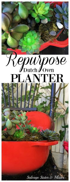 Terra-cotta and window boxes aren't the only thing that can hold your plants. What can you repurpose, upcycle, or reuse to display on your front porch, gardening bench, or back patio? A little DIY time and you can take something you may not use anymore in Love Garden, Garden Art, Garden Crafts, Herb Garden, Diy Home Crafts, Diy Craft Projects, Repurposed Items, Upcycle, Reuse