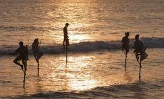 """""""Stelzenfischer"""" an der Küste von Sri Lanka -  auf unserer Sri Lanka Reise- Sri Lanka – Sanftes Abenteuer im Rhythmus des Mondes"""