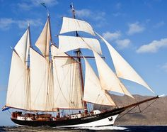 Oosterschelde was built in the Netherlands in 1918 at the order of the Rotterdam…