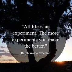 #quotes #life #experiment