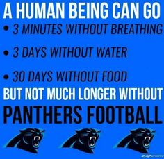 Nc Panthers, Carolina Panthers Football, Sport Football, Football Stuff, Carolina Pride, North Carolina, Panther Nation, Nfl, Panther Country